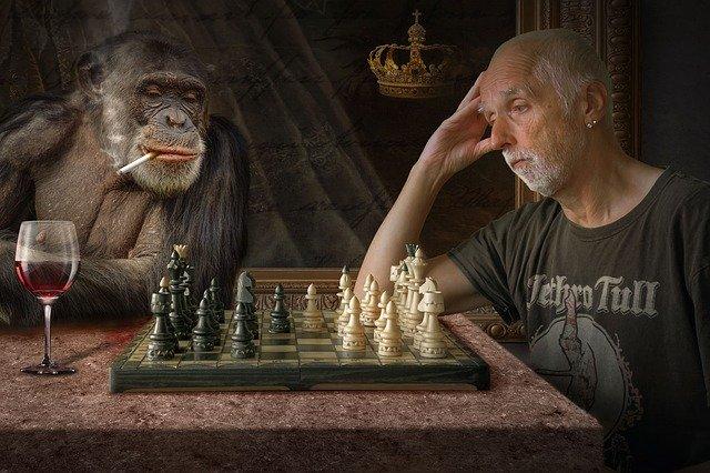 ajedrez el mono y yo