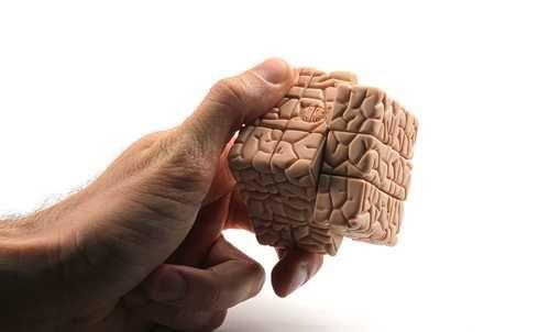 cubo rubik en forma de cerebro