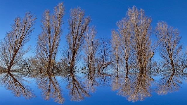 tipo de ilusión optica espejo